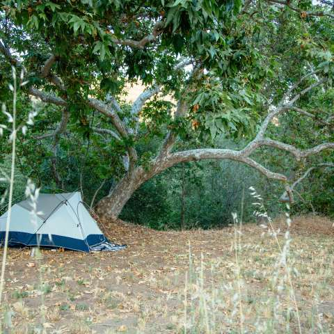 Sierra Foothills Group Camp