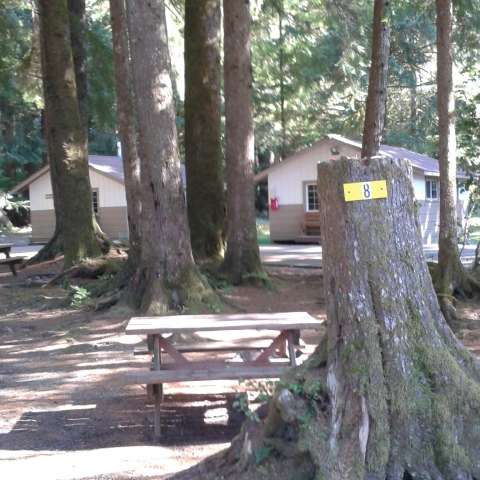 RV #8 Rainforest Beach Camp