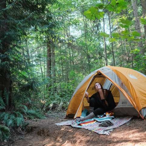 Camp Under the Cedars