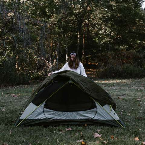 Wooded Campsite on Organic Farm