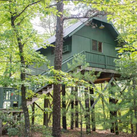 The Cabins at Vineyard Camp