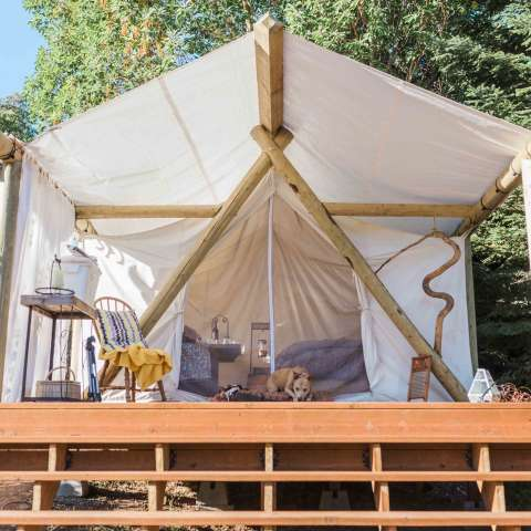 Your Glamping Sanctuary