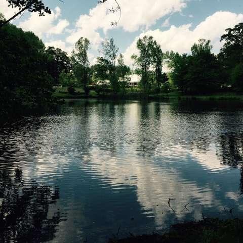 Rock Springs Lakeside