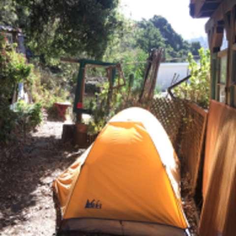 Geranium Forest Campsite