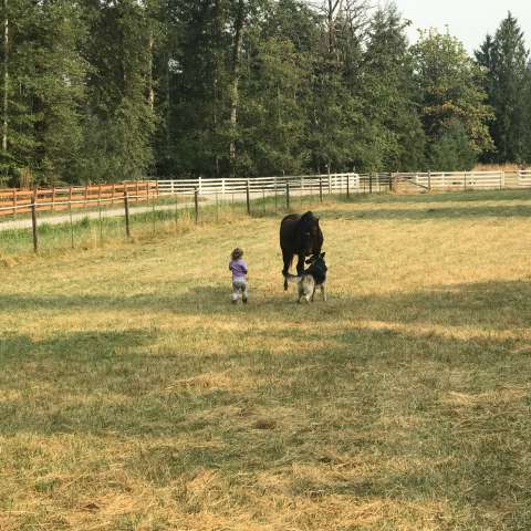 Working Hobby Farm Retreat