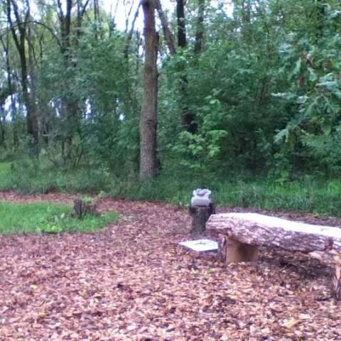 Food Forest Primitive Camping