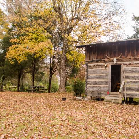 Huckleberry Farm & Gypsy Cabin