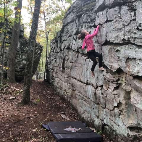 Dogwood Camp Climb Connect