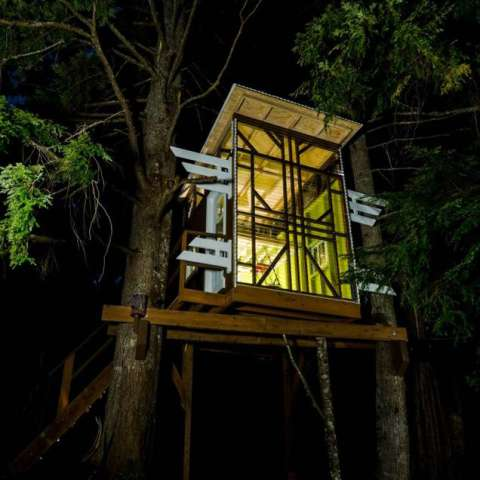 HASHTAG TREE HOUSE