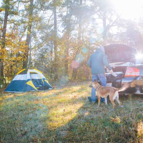 White House Country Camping