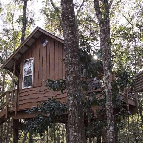 Tree House Cabin Retreat
