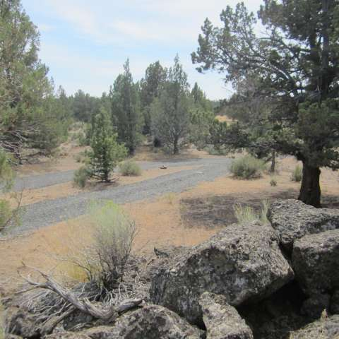 High Desert Peace and Quiet