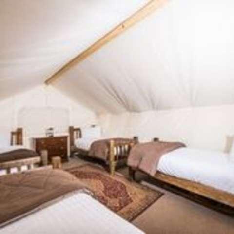 Moab Safari Tent 4 Twin Beds