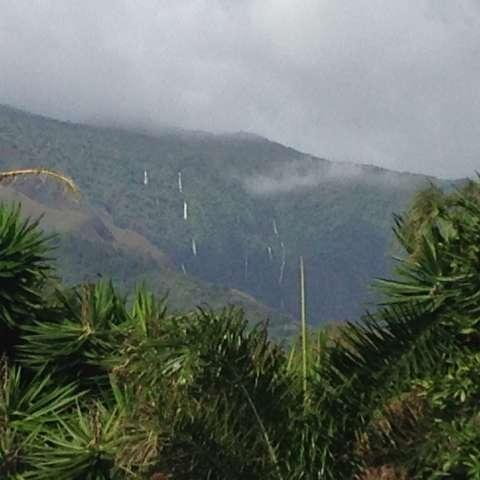 Kaupo Maui Pukaa Huhu Farm