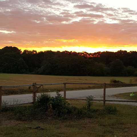 Willow Bay Farm