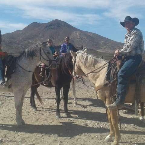 Longhorn Ranch Retreat