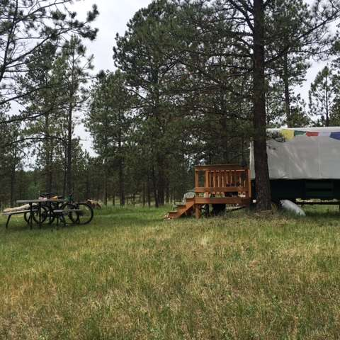 Black Hills Sheep Herders Wagon