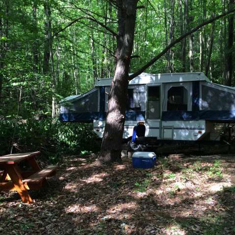 Monarch Pop-up Cabin