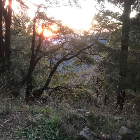 High Mountain in Los Gatos