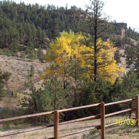 Indian Gulch Canyon Ranch,