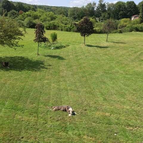 The Fort @ Fit Farm Bakerville