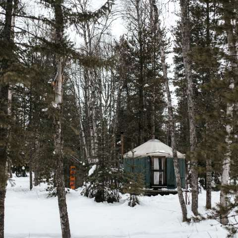 Small Yurt Tucked in the Woods