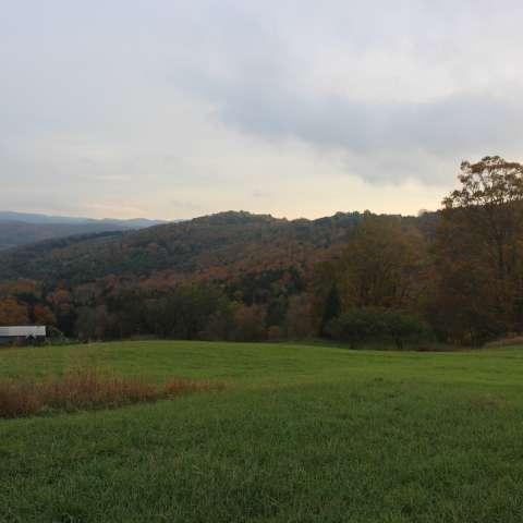 Hilltop Meadow