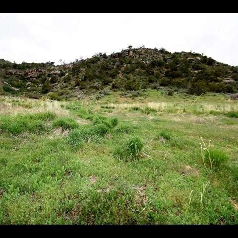 10 acres with valley views