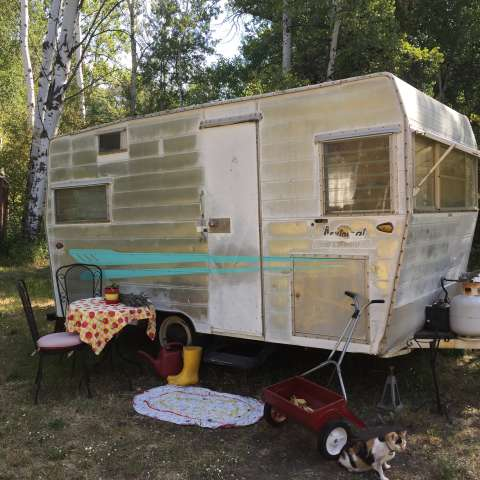 Meadow Momma-Vintage Camper