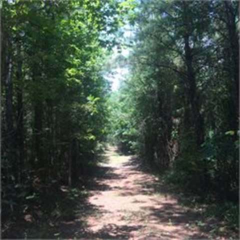 Tuscaloosa Camp