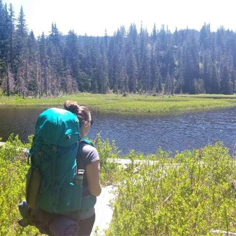 Ashland Lakes Trail Dispersed Camp