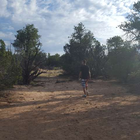 Arizona High Desert Seclusion