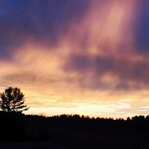 Sweeping Pines Sunset Camp
