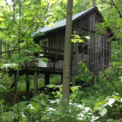 Tornado Cabin Sanctuary