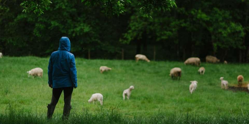 Why Stay on a Farm?