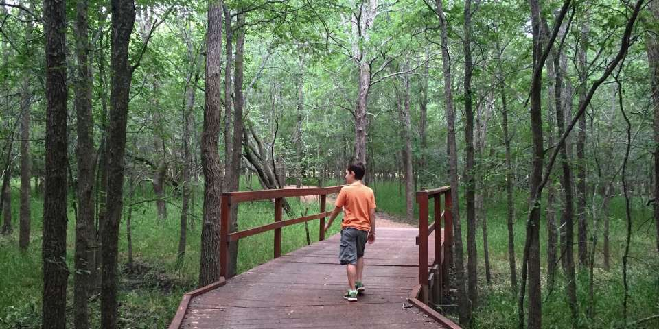 Why I Drag my Kids into the Woods