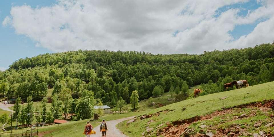 Road Trip Guide: Adventuring through America's Heartland