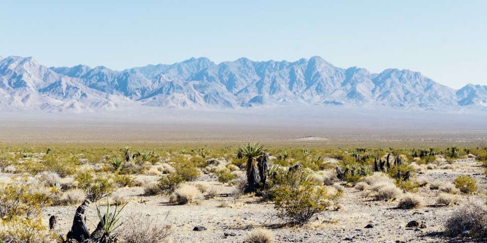 Best Places to Rent Camping Gear in Las Vegas