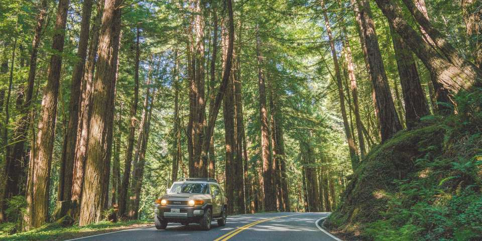 Tips for Road Tripping in Comfort and on a Budget