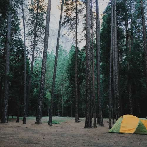Camping Outside of Yosemite National Park