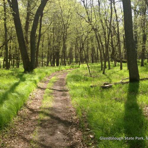 Fort Ann Primitive Camping: Best Camping Near Glacial Lakes State Park, Minnesota With
