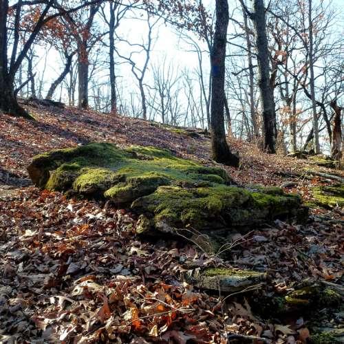 Fort Ann Primitive Camping: Best Camping Near Arkansas River