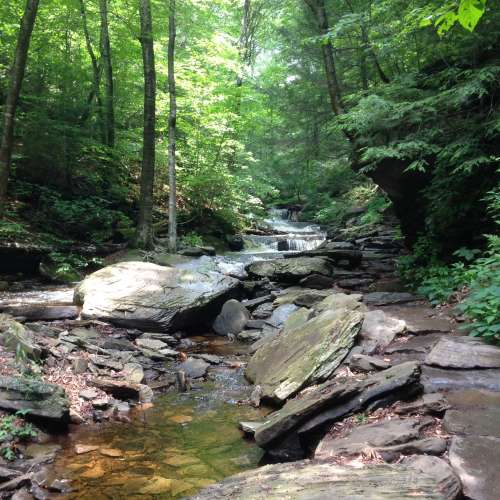 Hipcamp pennsylvania camping search the best campsite for Susquehanna state park cabins