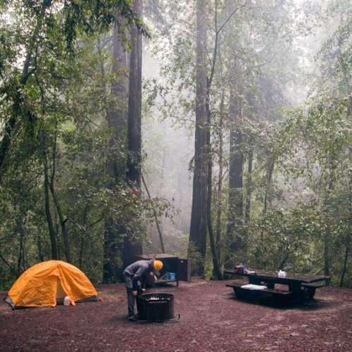 hipcamp big basin redwoods state park ca search
