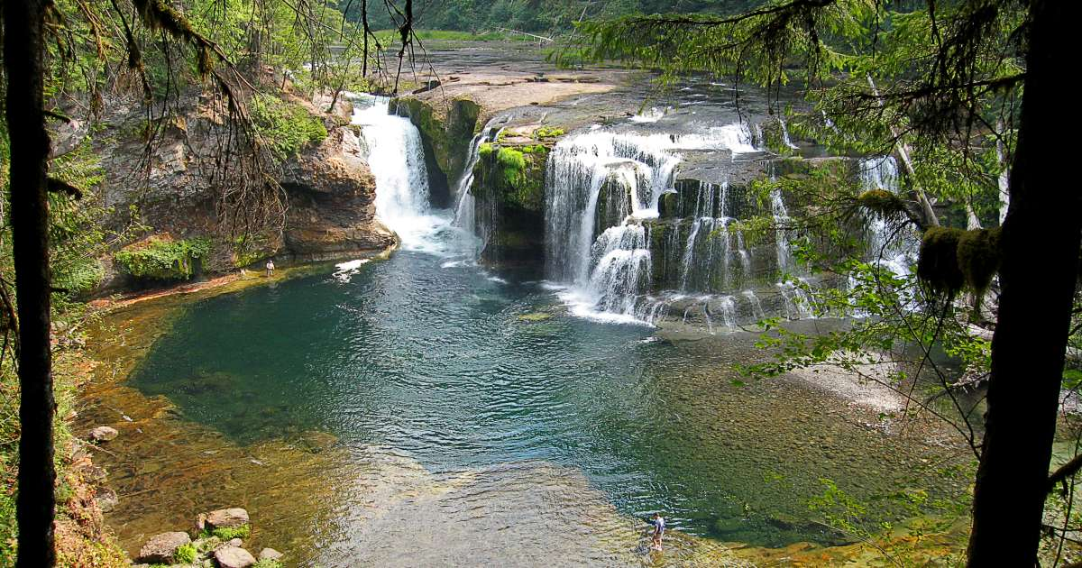 Paradise Creek Campground Gifford Pinchot Wa
