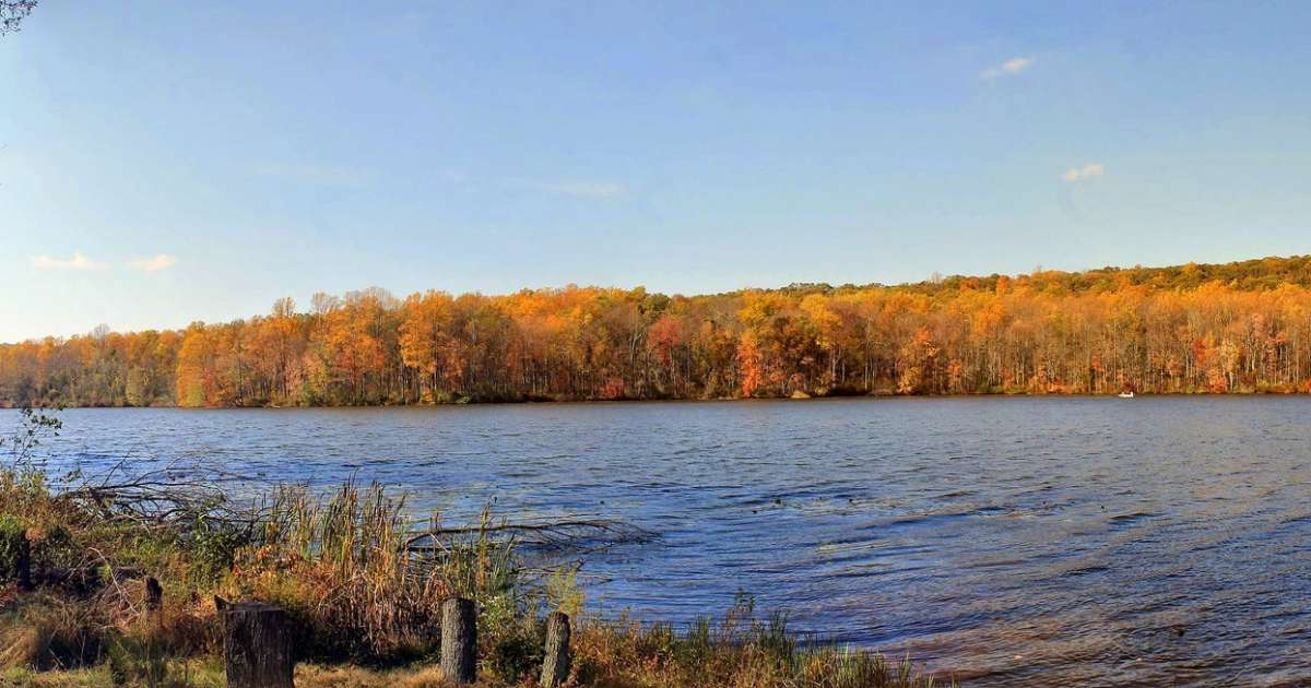 French Creek State Park Camping