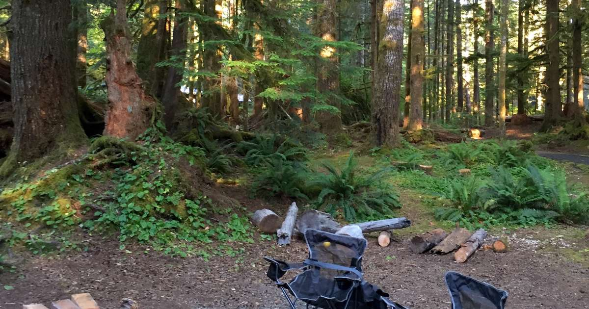 Coho Campground Olympic National Forest Wa 4 Photos
