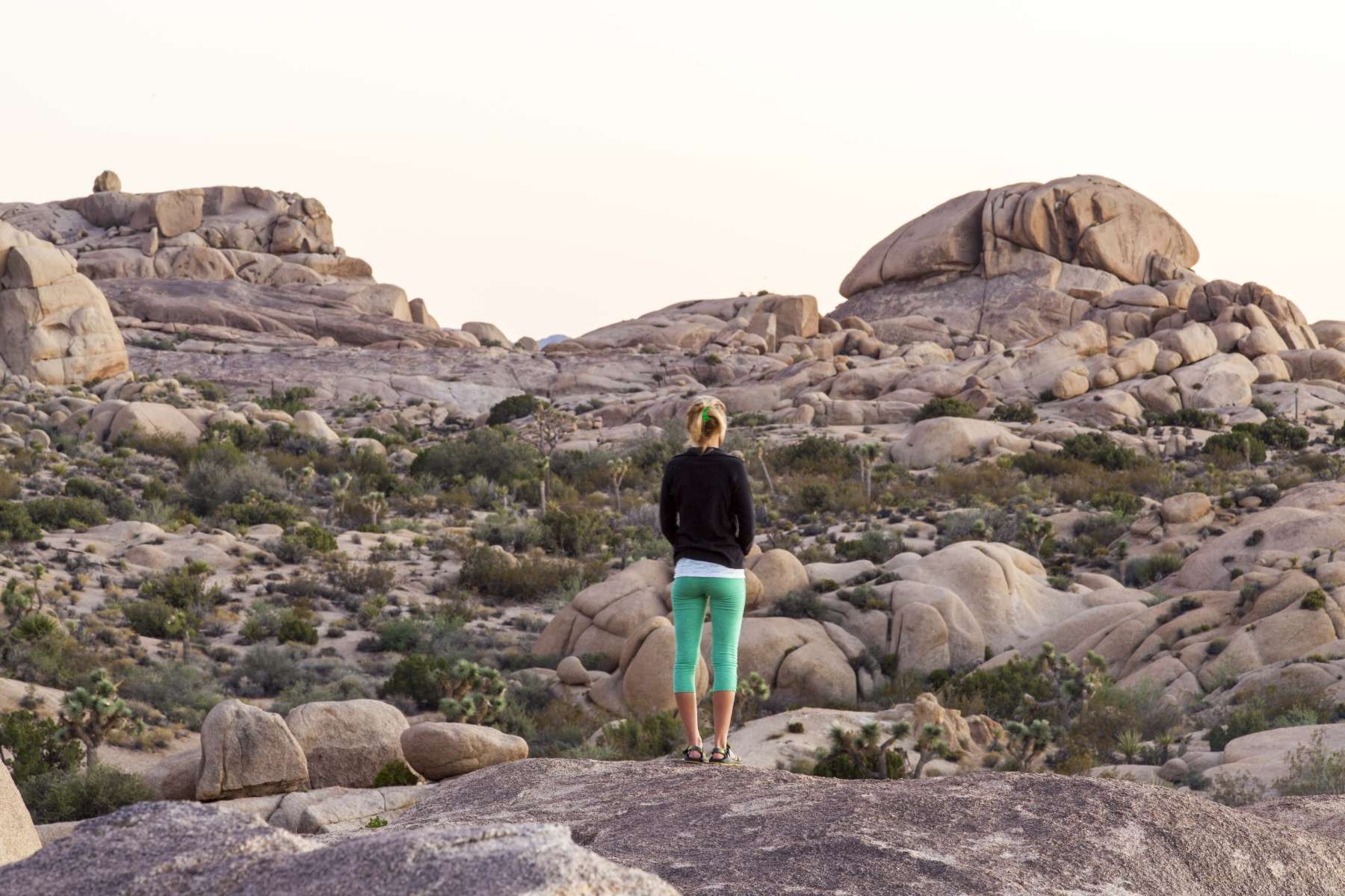 Best Camping in and Near Joshua Tree National Park
