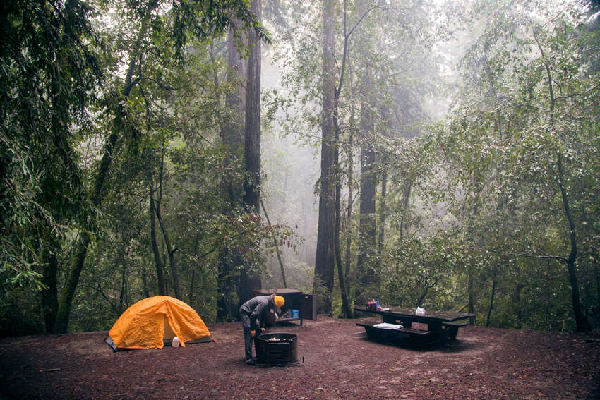 Huckleberry Campground Big Basin Redwoods CA 12 Hipcamper reviews