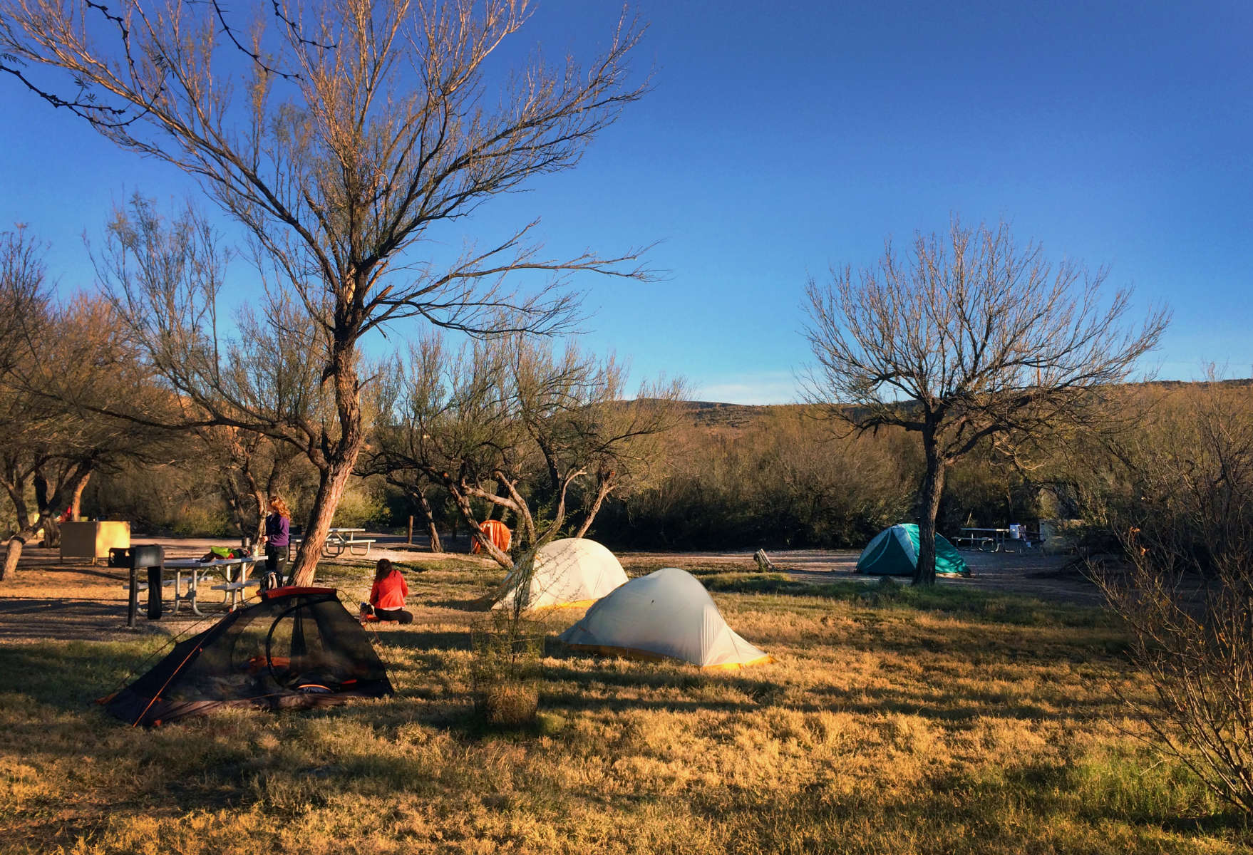 Rio Grande Village Campground Big Bend TX 9 Hipcamper reviews and